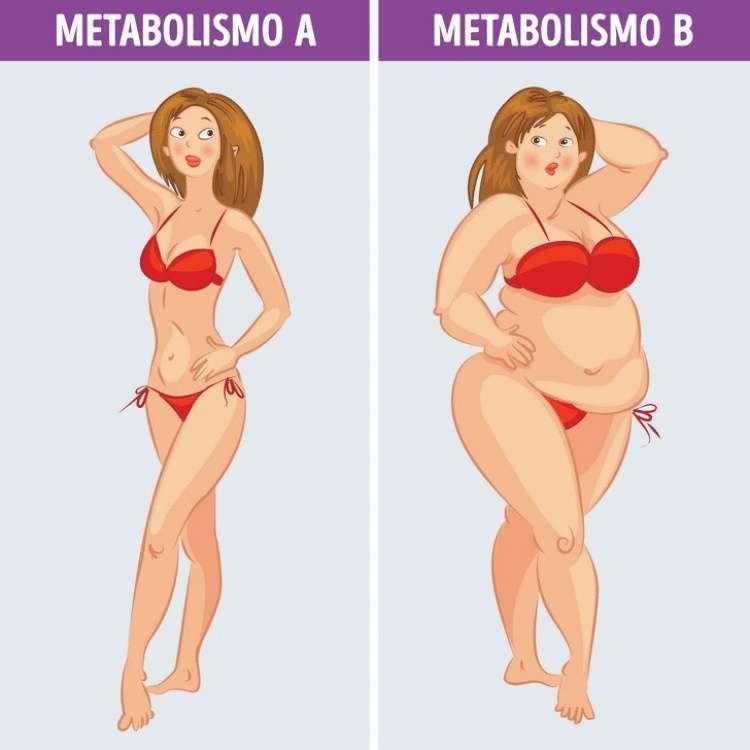 Правильное Похудение Этапы. 51 способ с чего начать похудение прямо сейчас